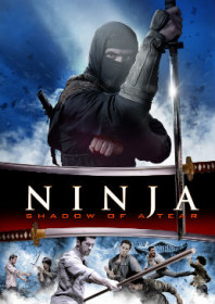 Ninja: Shadow of a Tear (2013)
