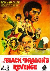 The Black Dragon's Revenge (1975)